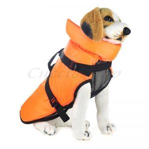 giubbotto di salvataggio per cani